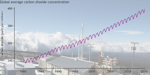 Graph shows global average CO2 concentration since 1980