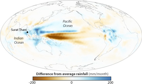 Global map of precipitation anomaly forecast