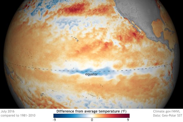 Sea surface temperature anomaly July 2016