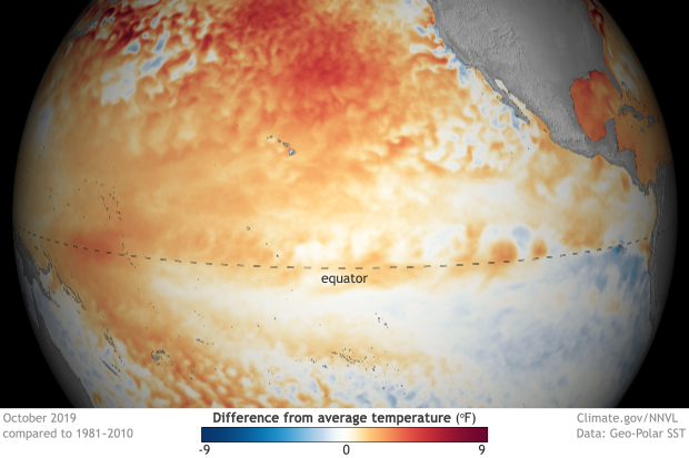 A globe-style map of temperature anomalies in the Pacific Ocean, centered on the ENSO-monitoring region at the equator