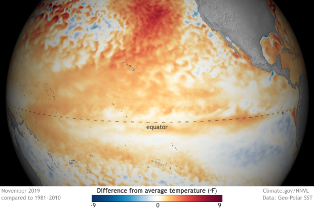 Globe-style map of the tropical Pacific Ocean showing difference from average temperature in November 2019
