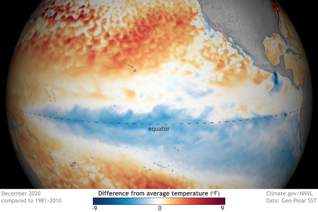 Spherical map of tropical Pacific SSTs in December 2020