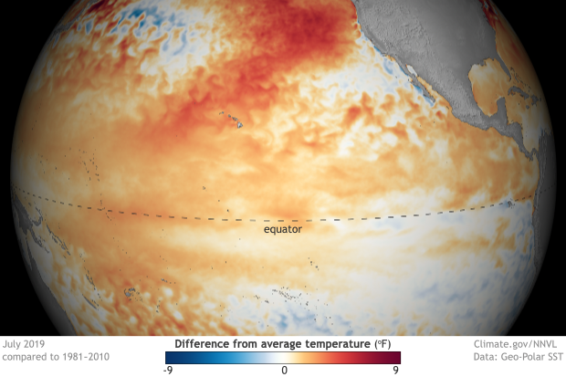 Globe-style map of the tropical Pacific Ocean showing difference from average temperature in July 2019