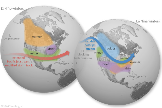 Globes showing typical climate impacts over the U.S. during El Niño and La Niñaca