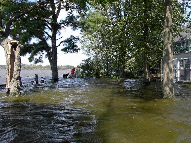 dorchester county fishing creek single