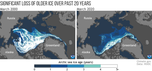 Map comparison of the age of sea ice in the Arctic in March 2000 (left) and March 2020 (right)