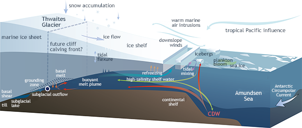 Glacier-ice-shelf schematic