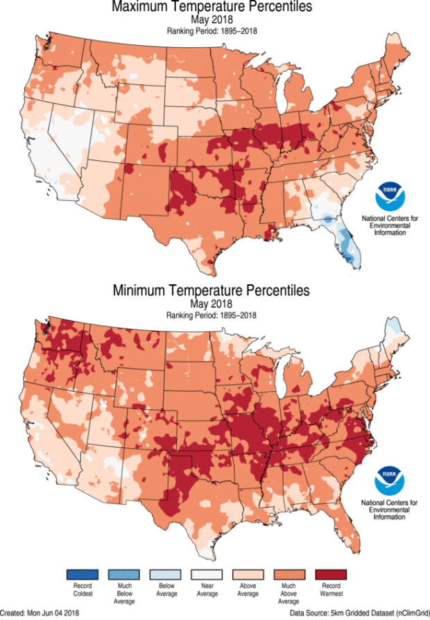 Rank categories for May Maximum and Minimum Temperature by grid point, CONUS, May 2018