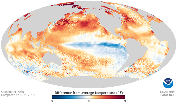 Sea surface temperature, anomaly, September 2020