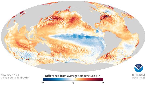 Sea surface temperature, anomaly, November 2020