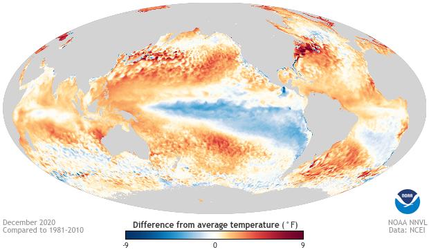 ocean temperature anomaly, December 2020