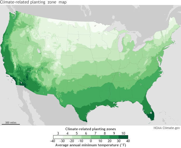 New climate-related planting zones