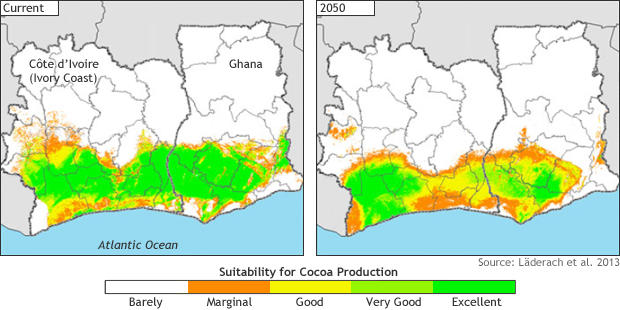 Cocoa-cultivation suitability