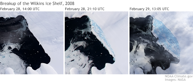 Wilkins Ice Shelf disintegration sequence