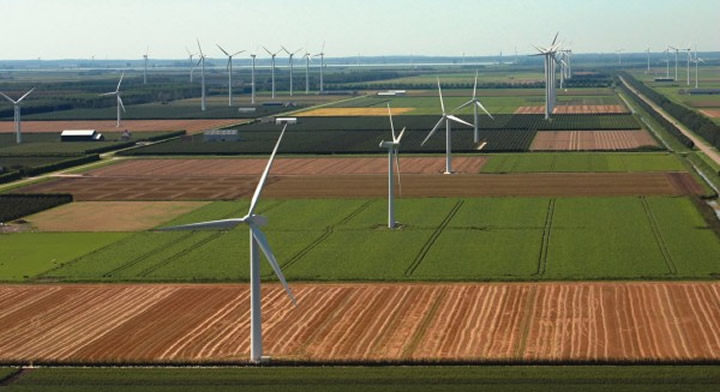 Photo of windmills in field